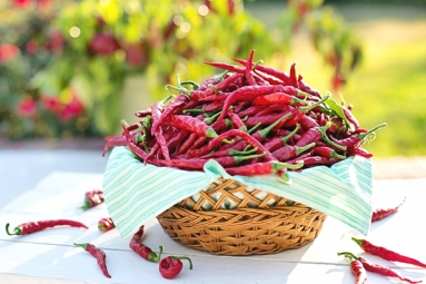 Chili Peppers Help Burn Away the Fat